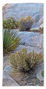 Varied Desert Flora Along Barker Dam Trail In Joshua Tree Np-ca Bath Towel