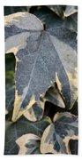 Varigated Ivy Leaves Bath Towel