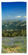 Vast View And Lupine Bath Towel