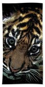 Velvet Tiger Cub Bath Towel