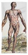 Vesalius: Muscles 01 Bath Towel