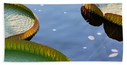 Victoria Waterlilies Bath Towel