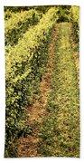 Vines Growing In Vineyard Bath Towel