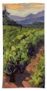 Vineyard At Dentelles Bath Towel