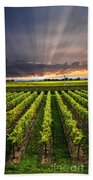 Vineyard At Sunset Bath Towel