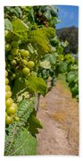 Vineyard Grapes Bath Towel