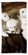 Vintage Festive Puppies Hand Towel