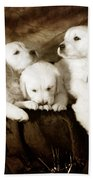 Vintage Festive Puppies Bath Towel