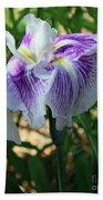 Violet Striped Iris Bath Towel