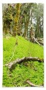 Virgin Mountain Rainforest Of Marlborough Nz Bath Towel