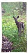 Virginia - Shenandoah National Park - White Tailed Deer Bath Towel