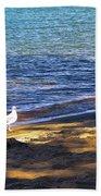 Visitor - Lake Tahoe Bath Towel