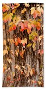Vitaceae Family Ivy Wall Abstract Bath Towel