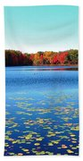 Vivid Fall Colors Bath Towel