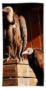 Vulture Male Bath Towel