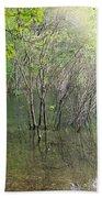 Walden Pond Bath Towel