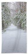 Walk In Snowy Woods Bath Towel