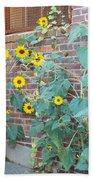 Wall Of Sunflowers 1 Bath Towel