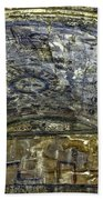 Ceiling And Wall Paintings Bath Towel