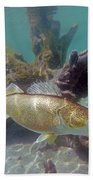 Walleye Pike And Dardevle Bath Towel