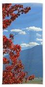 Dn5930-wallowa Valley In Fall Bath Towel
