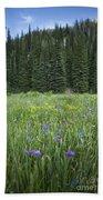 Wallowa Wildflowers Bath Towel