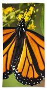 Wandering Migrant Butterfly Bath Towel