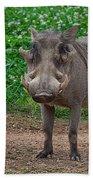 Warthog Stance Bath Towel