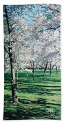 Washington Dc Cherry Blossoms Bath Towel