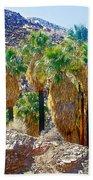 Washingtonian Fan Palm Grove Along Lower Palm Canyon Trail Near Palm Springs-california  Bath Towel
