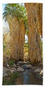 Washingtonian Fan Palms With Large Skirts In Andreas Canyon-ca Bath Towel