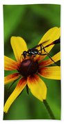 Wasp On A Susan Bath Towel