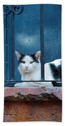 Watchful Cat, Mexico Bath Towel