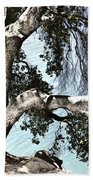 Water Beyond The Tree Hand Towel