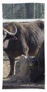 Water Buffalo Bath Towel