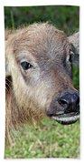 Water Buffalo Calf Bath Towel