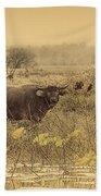 Water Buffaloes At Corroboree Billabong V2 Bath Towel