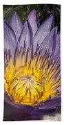 Water Lilies Hand Towel