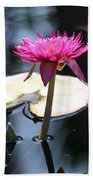 Pink Water Lily Bath Towel
