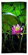 Water Lily 3 Bath Towel