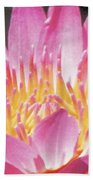 Pink Water Lily Beauty Bath Sheet