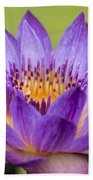 Water Lily Lindsey Woods Macro Bath Towel