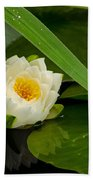 Water Lily Reflection Bath Towel
