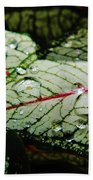 Water On The Leaves Bath Towel