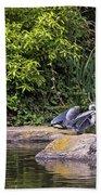 Waterfowl Pond Bath Towel