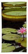 Waterlilies And Platters Vertical Romance Bath Towel