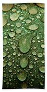 Raindrops On Watermelon Rind Bath Towel