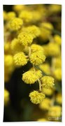 Wattle Flowers Australian Native Bath Towel