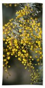 Wattle Flowers Bath Towel