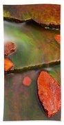 Weano Gorge - Karijini Np 2am-111702 Bath Towel